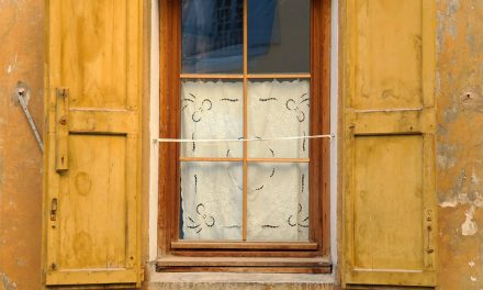 What the Woman In the Window Taught Me About Body Image