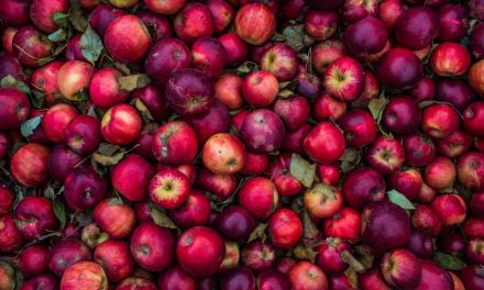 How An Apple Illustrates Problems With Our Food System