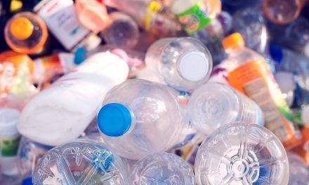 BPA Is Linked To Obesity So Why Is It Still Everywhere?